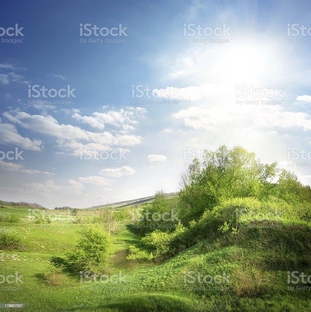 Green ravine royalty-free stock photo