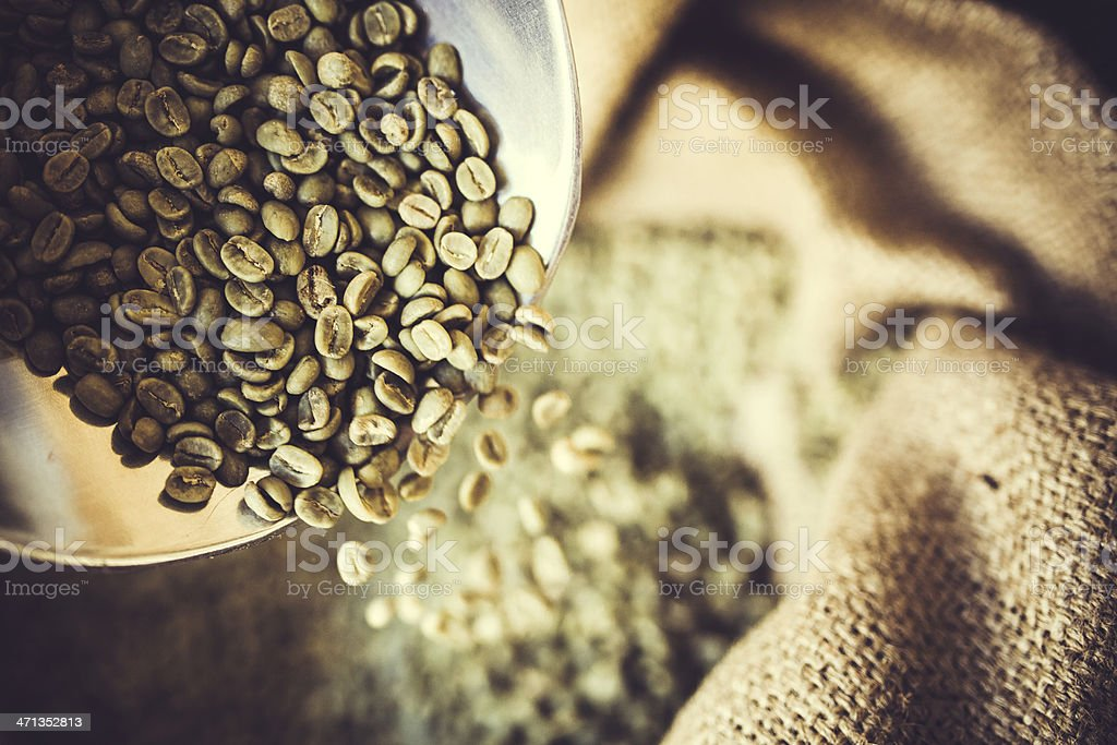 A large metal scoop holds up freshly harvested unroasted coffee...