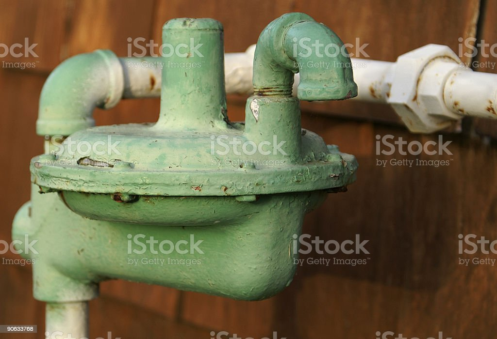 Green Regulator royalty-free stock photo