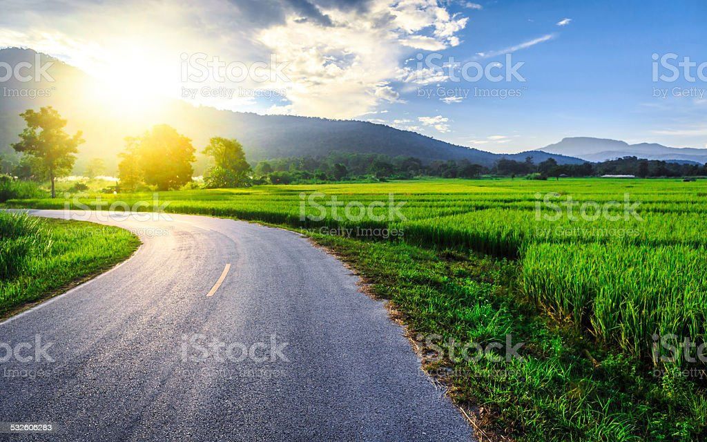 Green Rice Field with Mountains Background under Blue Sky stock photo