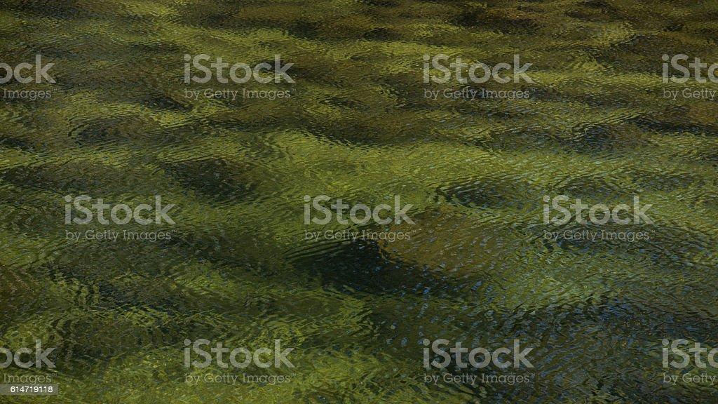 Green Ripple stock photo