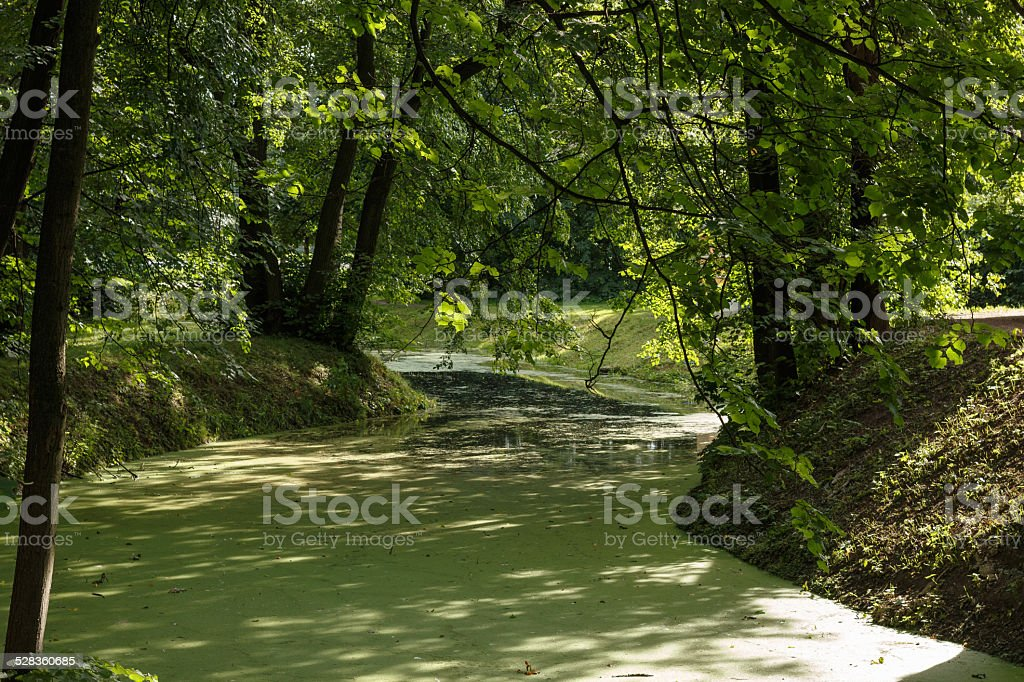 Green river stock photo