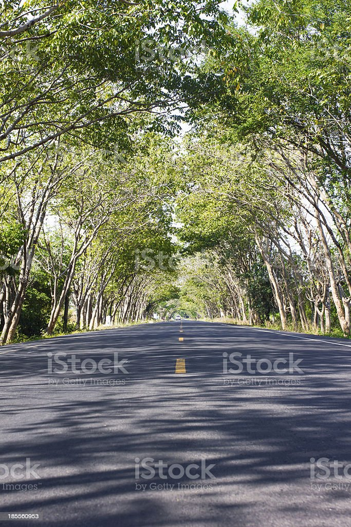 Green Road, and connectivity at countryside royalty-free stock photo