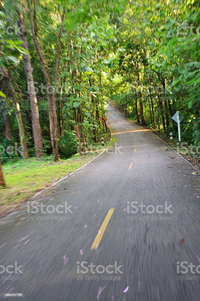 Green road royalty-free stock photo