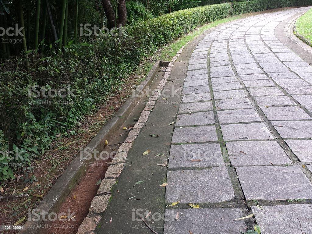 Green Road stock photo