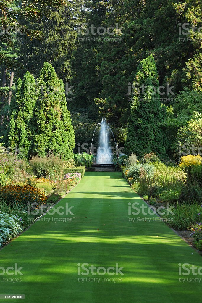 Green  road to the charming fountain royalty-free stock photo