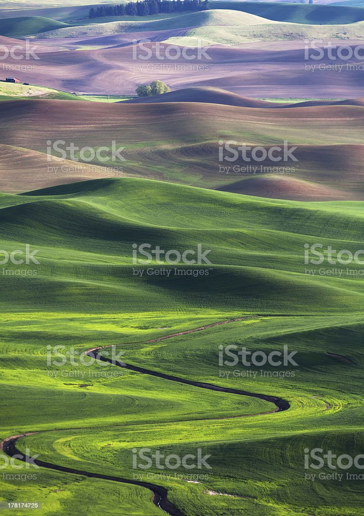 Green rolling hills and farm land stock photo
