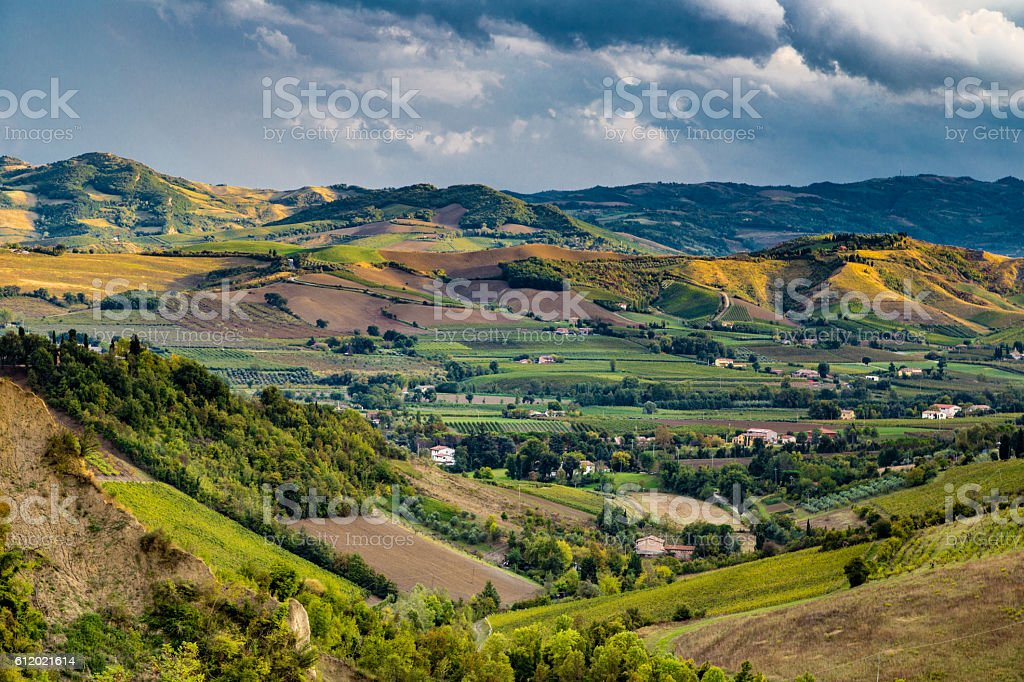 Green rolling hills stock photo