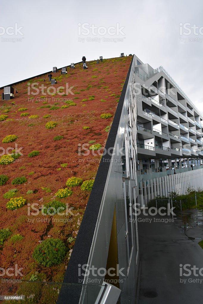 Green roof - vertical garden stock photo