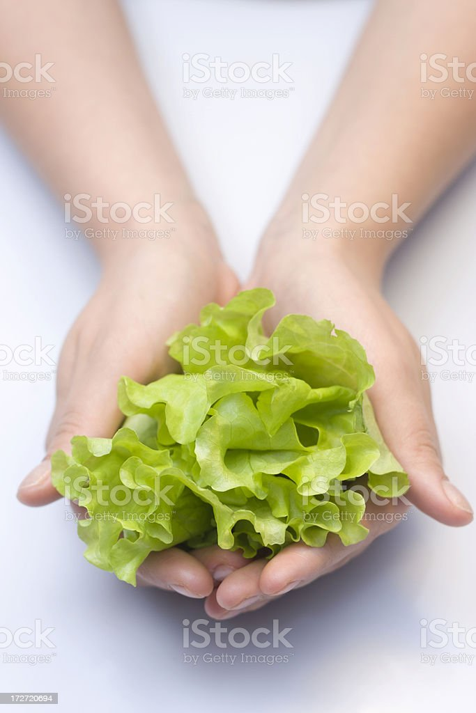 Green salad in palms royalty-free stock photo
