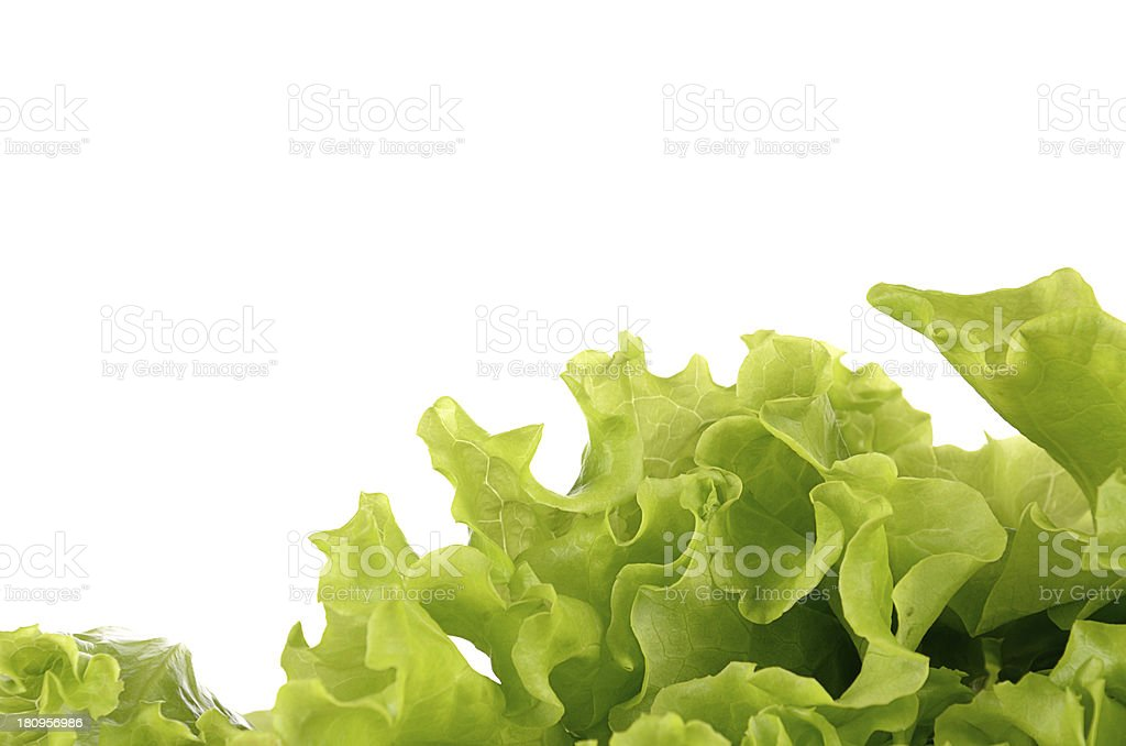 Green salad isolated on a white background royalty-free stock photo
