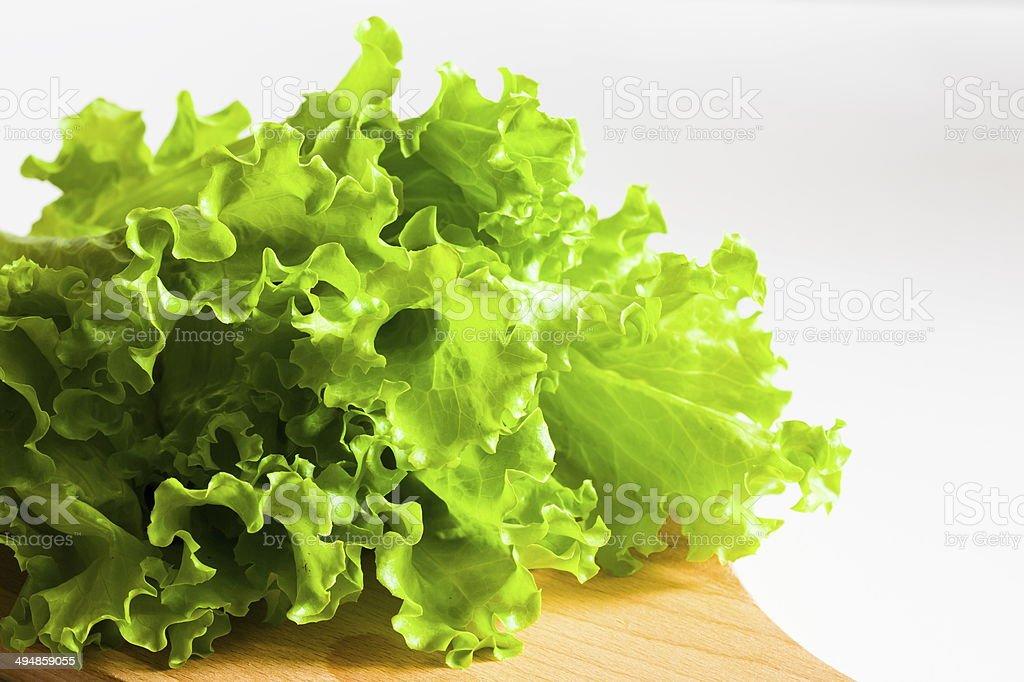 green salad lettuce stock photo