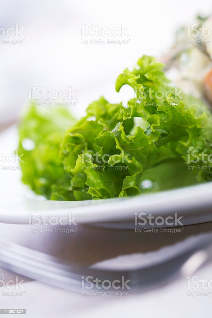 Green Salad. royalty-free stock photo