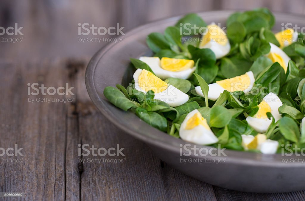 Green Salad with eggs stock photo