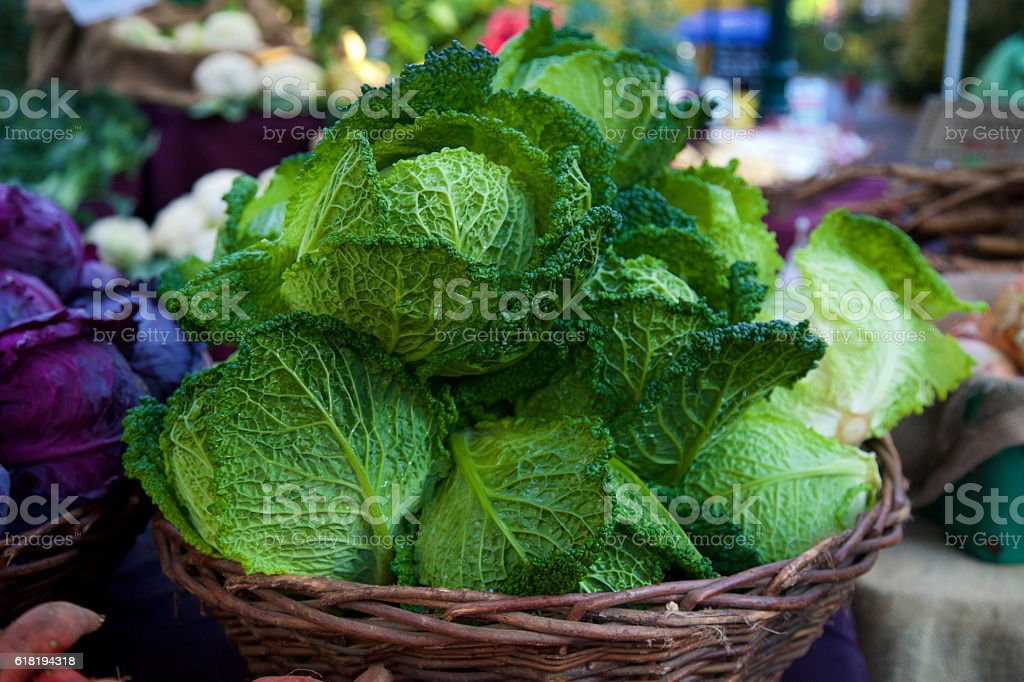 Green savoy cabbage at the farmer's market stock photo