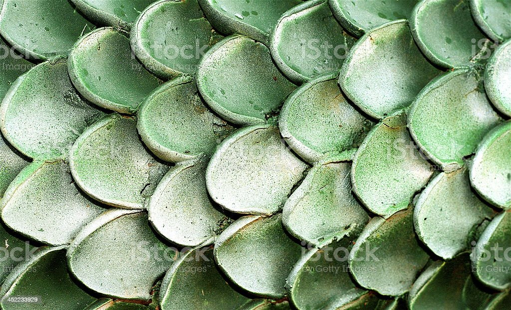 Green Scales stock photo