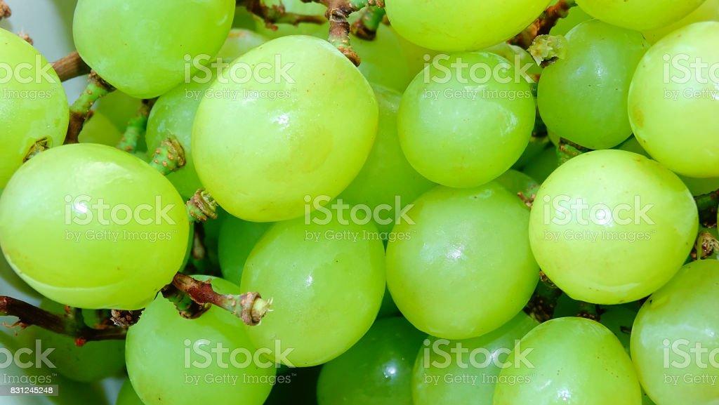 Green seedless grapes stock photo
