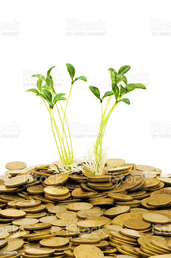 Green seedling growing from the pile of coins royalty-free stock photo