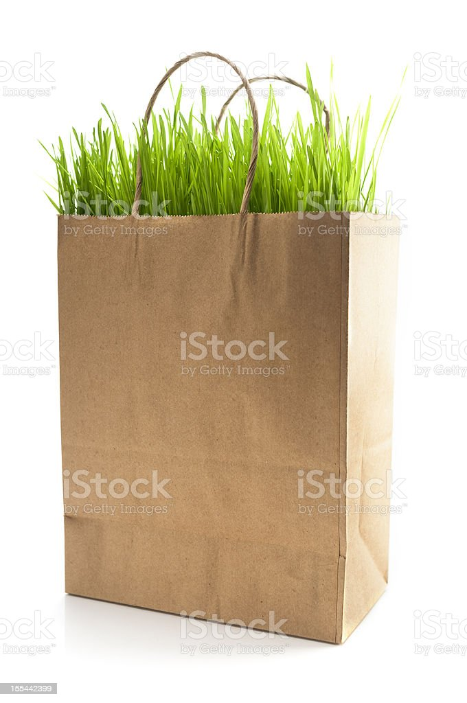 Green Shopping royalty-free stock photo