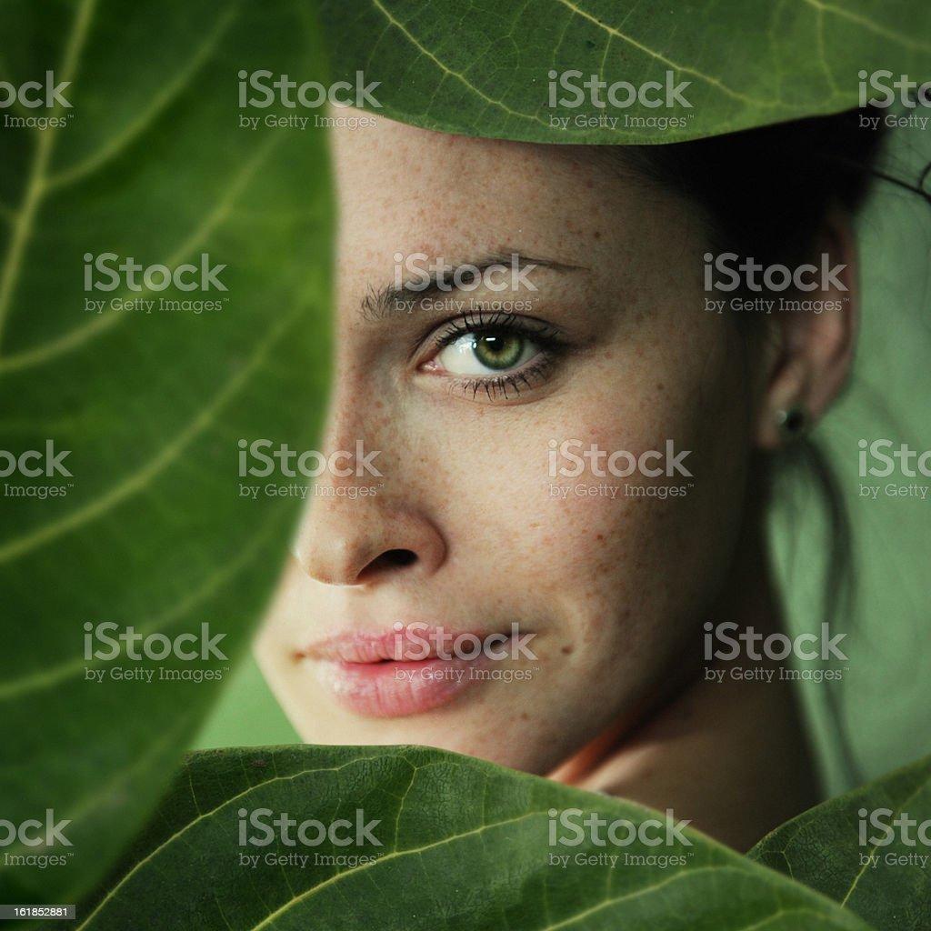 green sight stock photo