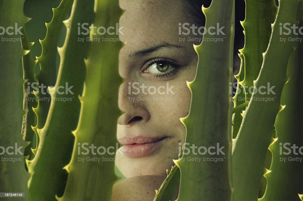 green sight stock photo