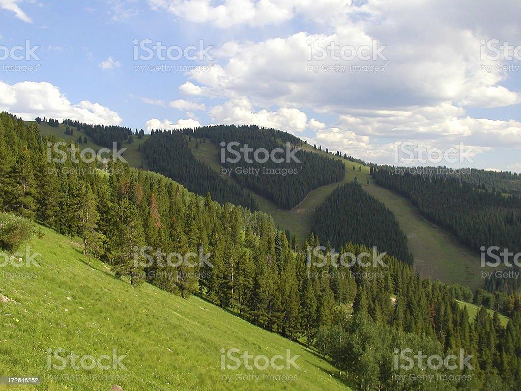 Green Ski Slopes stock photo