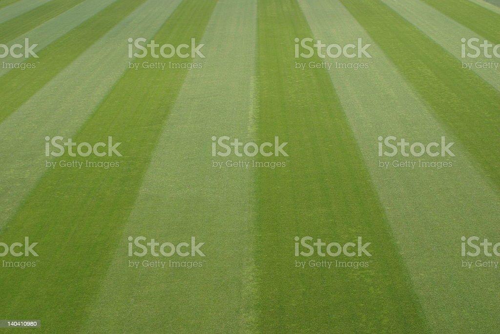 green soccer field royalty-free stock photo