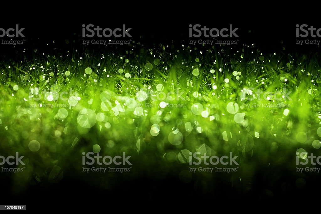 Green sparkling Christmas background royalty-free stock photo