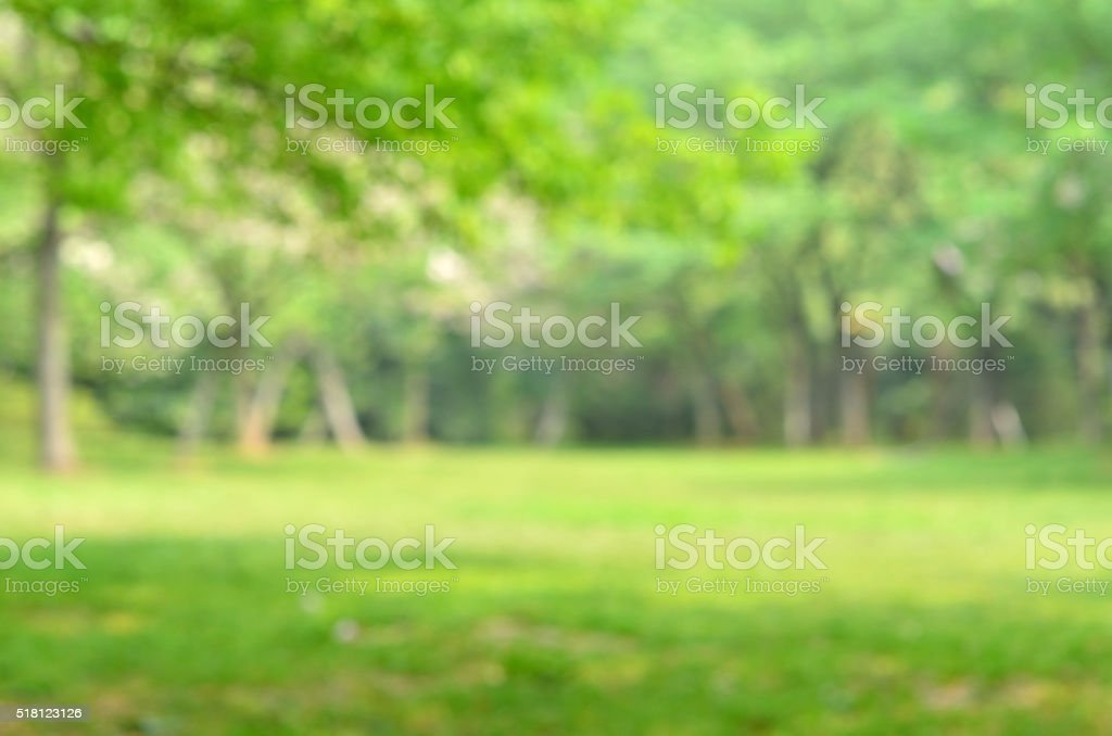 Green spring defocused abstract background stock photo