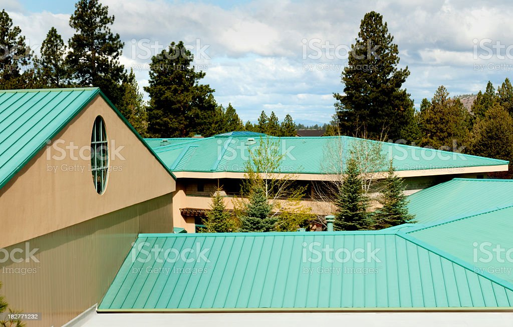 A green steel roof amongst trees stock photo