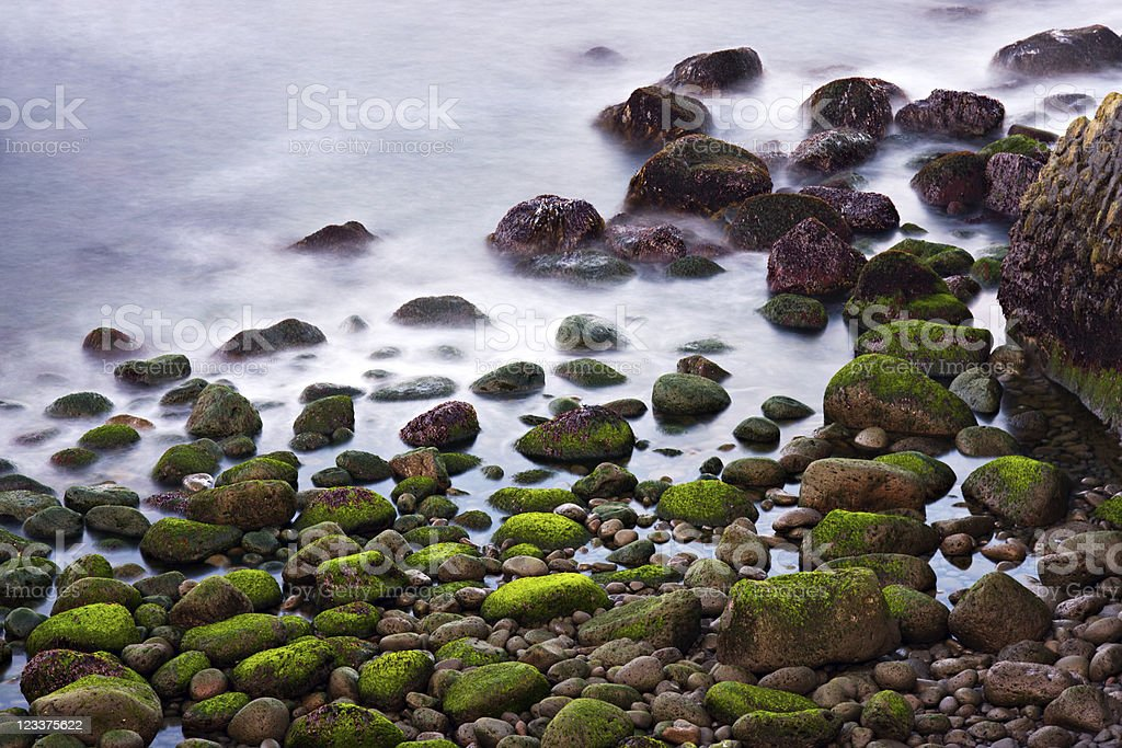 Green Stones In The Surf royalty-free stock photo