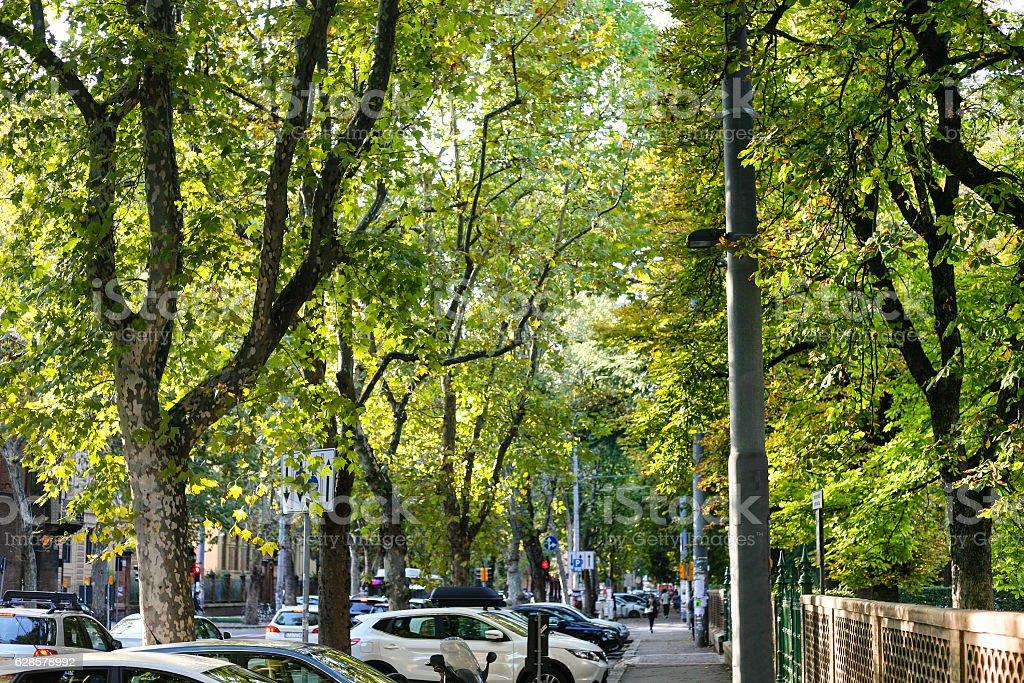green street in Bologna city stock photo