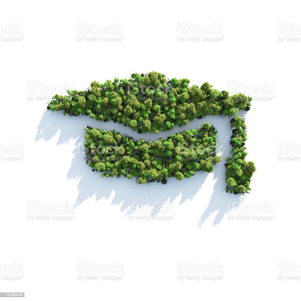 Green Study royalty-free stock photo