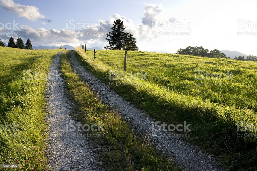 Green Summer Landscape with Country Road royalty-free stock photo