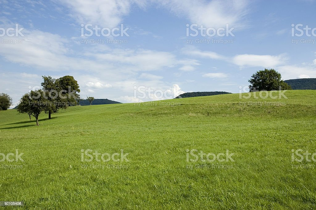 green summer meadow royalty-free stock photo