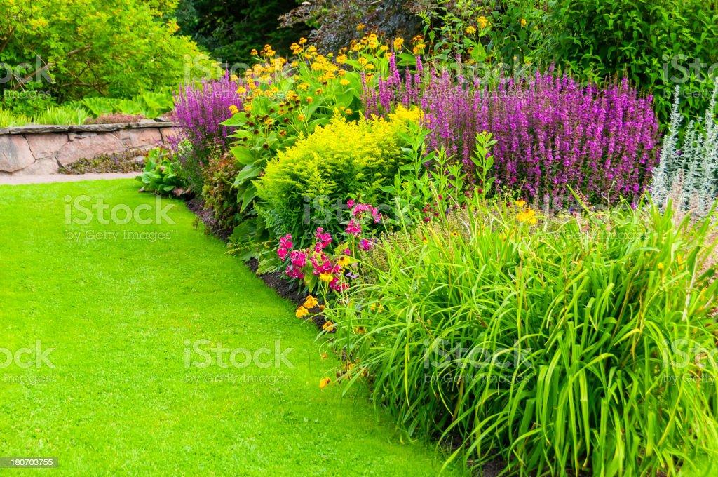 Green summer royalty-free stock photo
