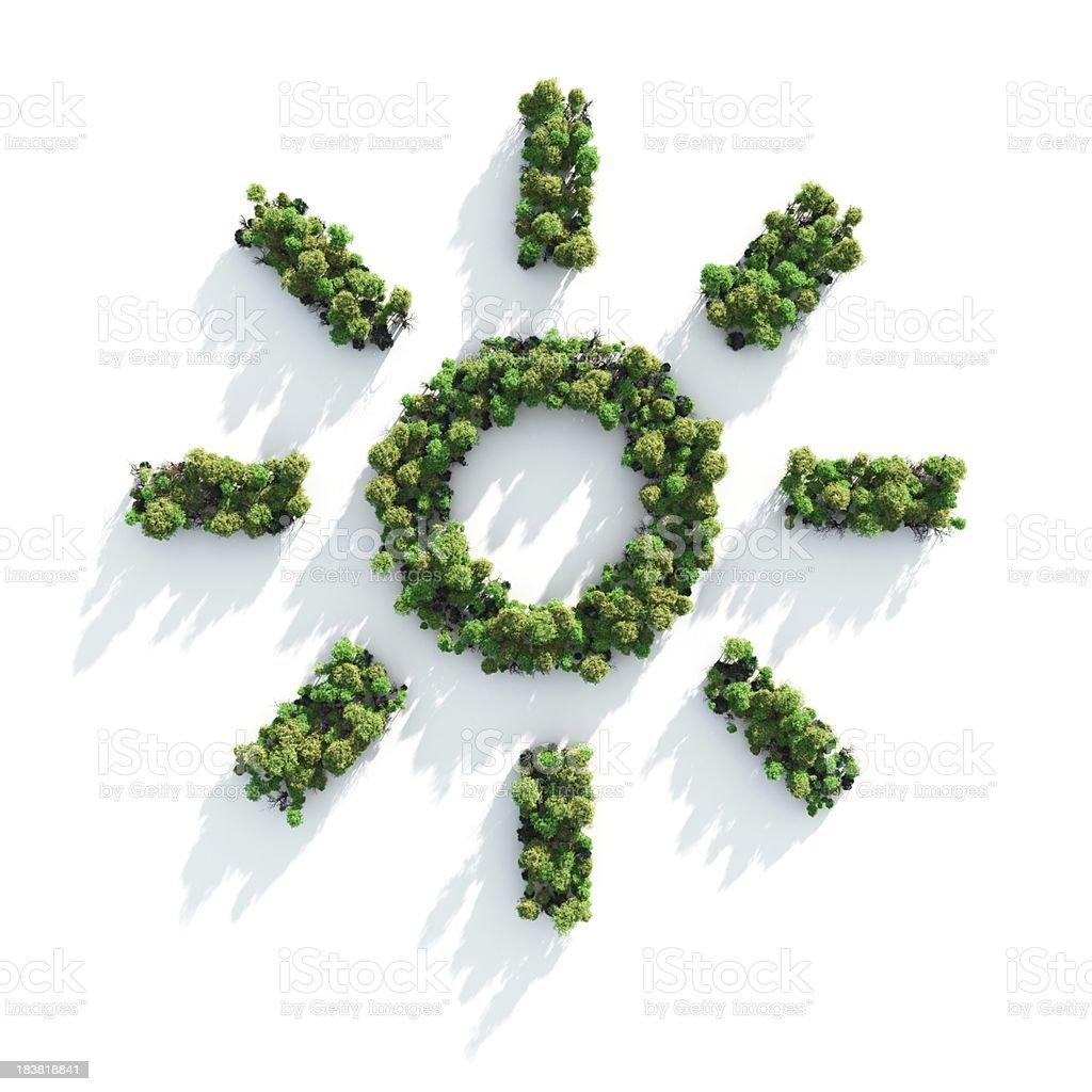 Green Sunshine royalty-free stock photo