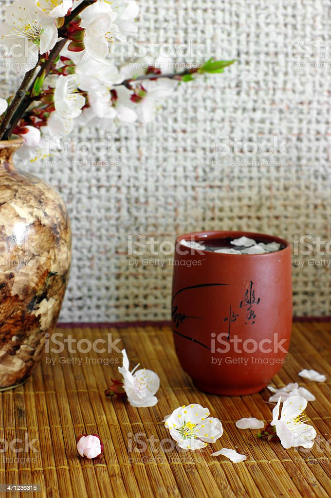 Green tea with apricot flowers, close-up stock photo
