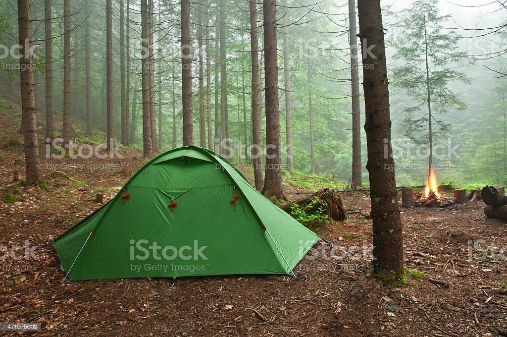 A green tent in the forest with a campfire burning  stock photo