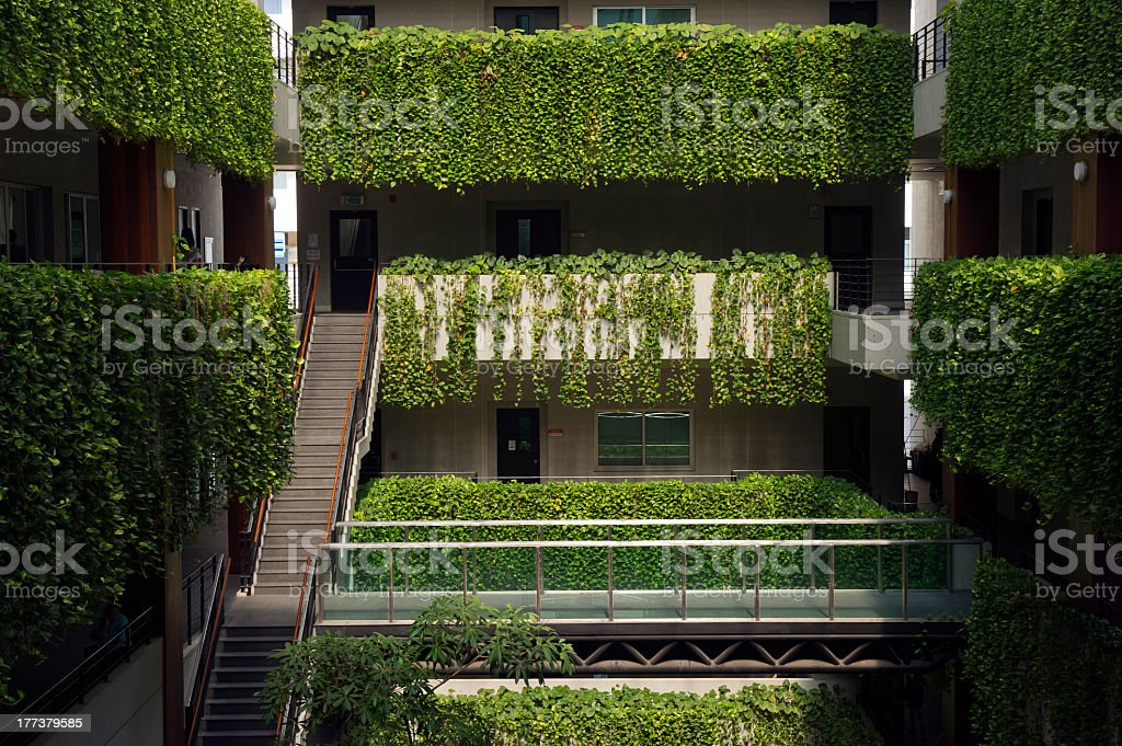 Green terrace garden in urban setting stock photo