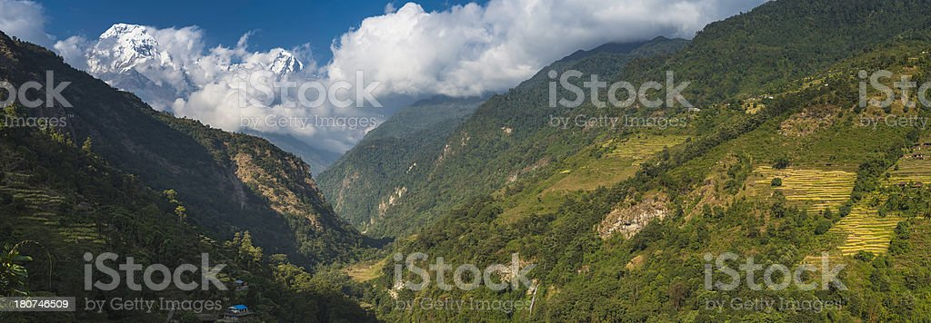 Green terraced valley farms idyllic remote landscape Annapurna Himalayas Nepal stock photo