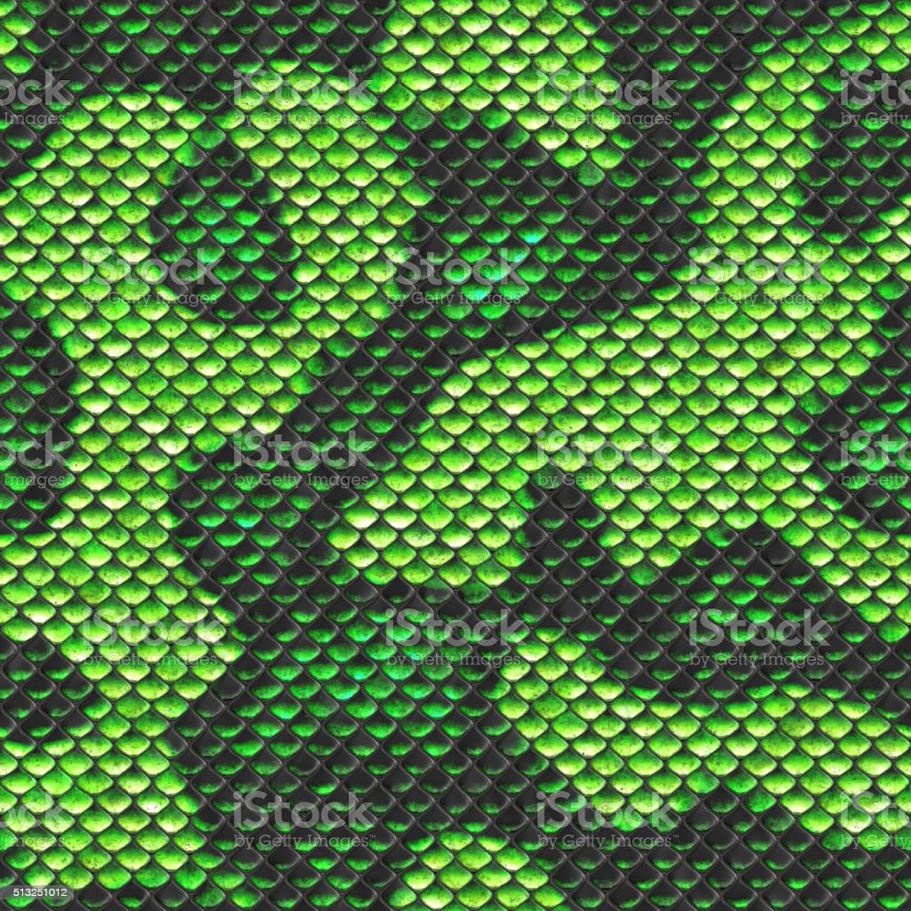green textur snake skin seamless stock photo