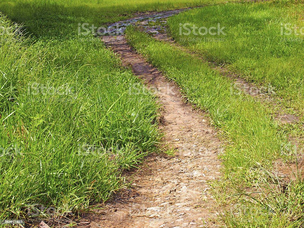 Green trail royalty-free stock photo