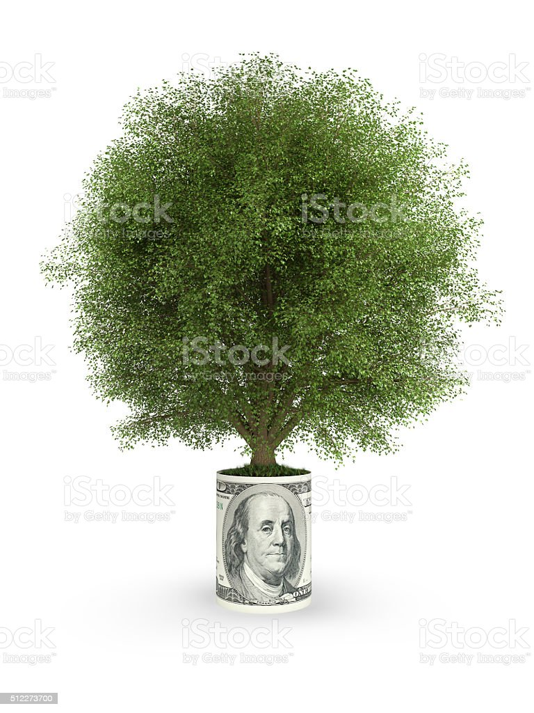 Green tree in one hundred dollar stock photo