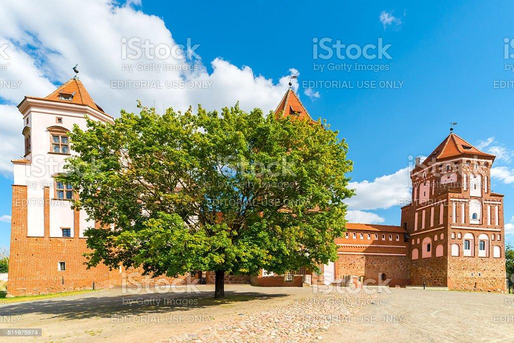 green tree near the castle Mir in Belarus stock photo