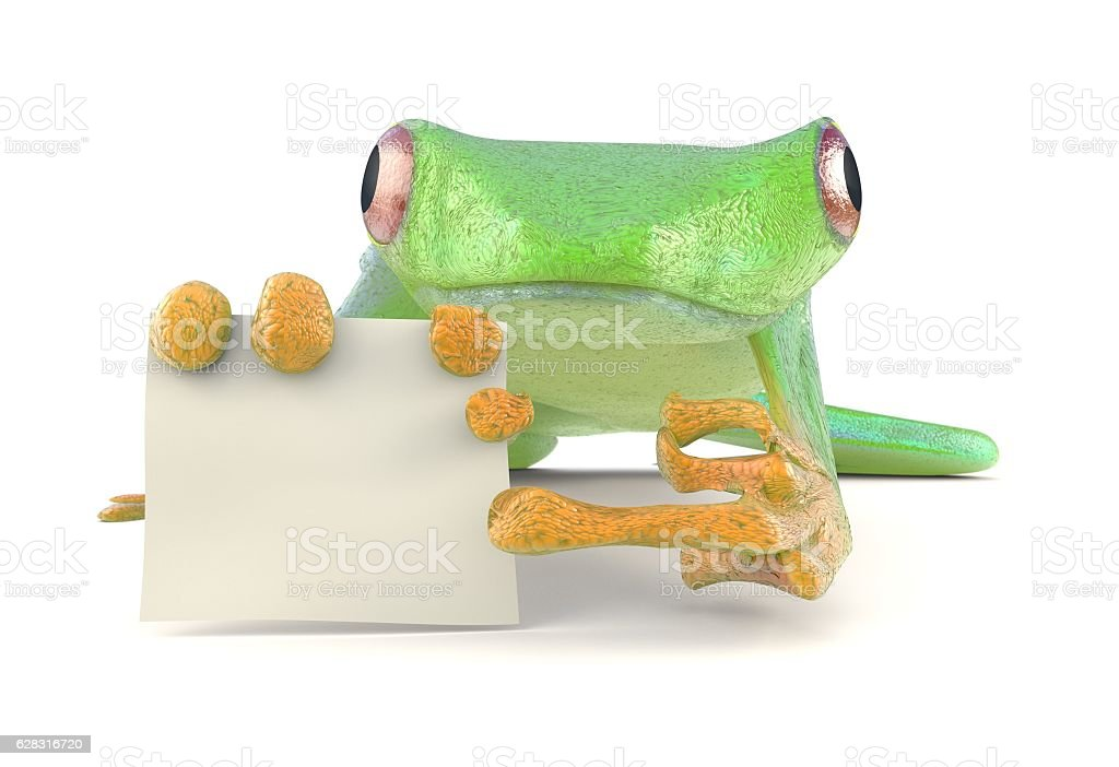 Green tree red eye frog with a blank sign pointing stock photo