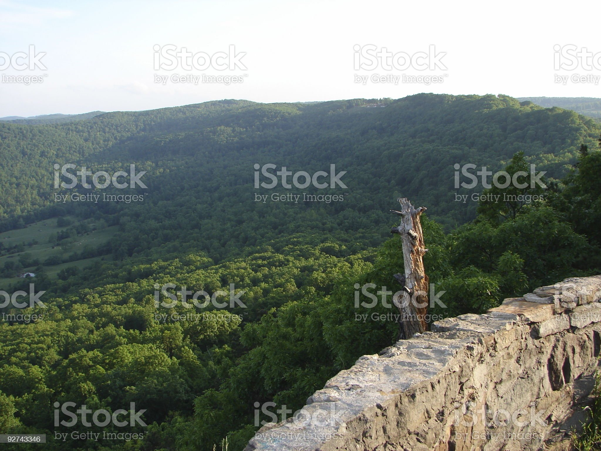 Green tree top rolling hills Arkansas royalty-free stock photo