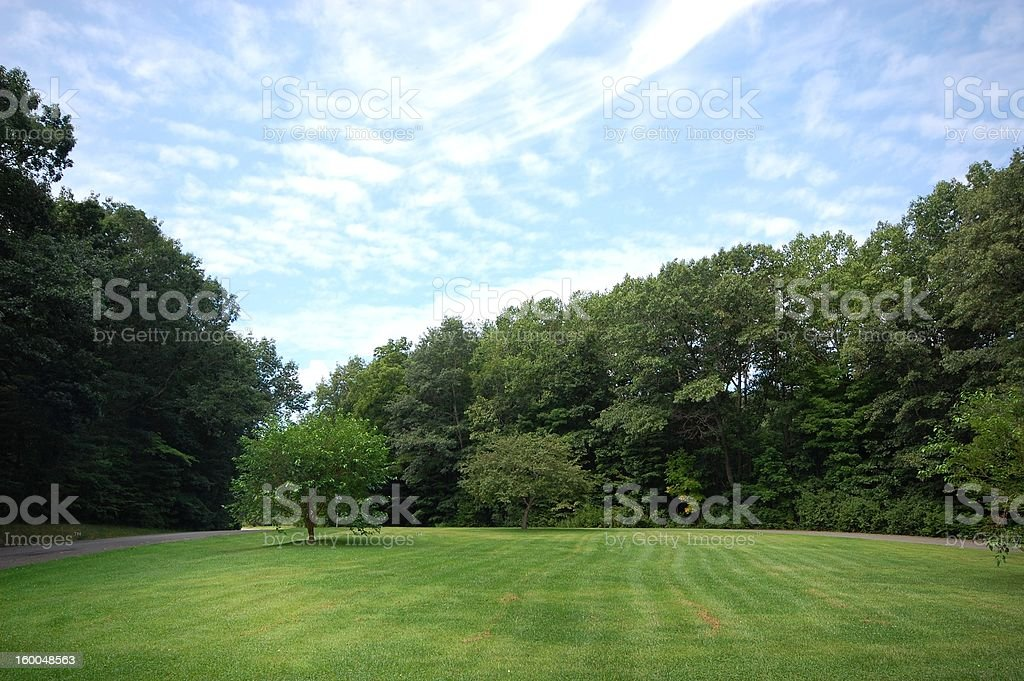 Green trees and lawn royalty-free stock photo