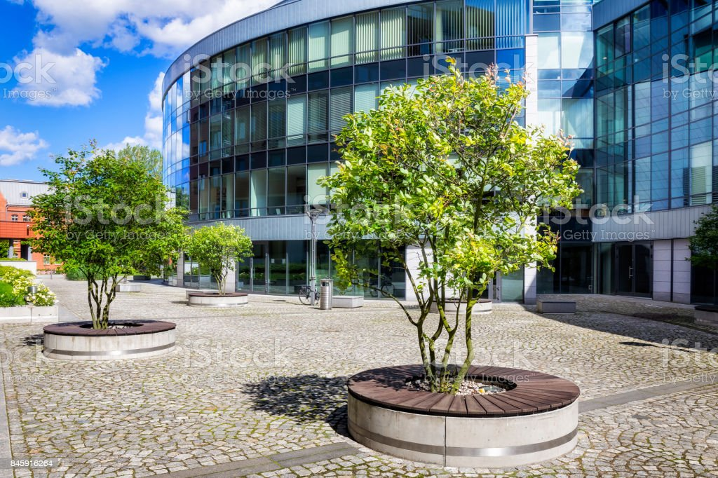Green trees in front of glass facade of the office building stock photo