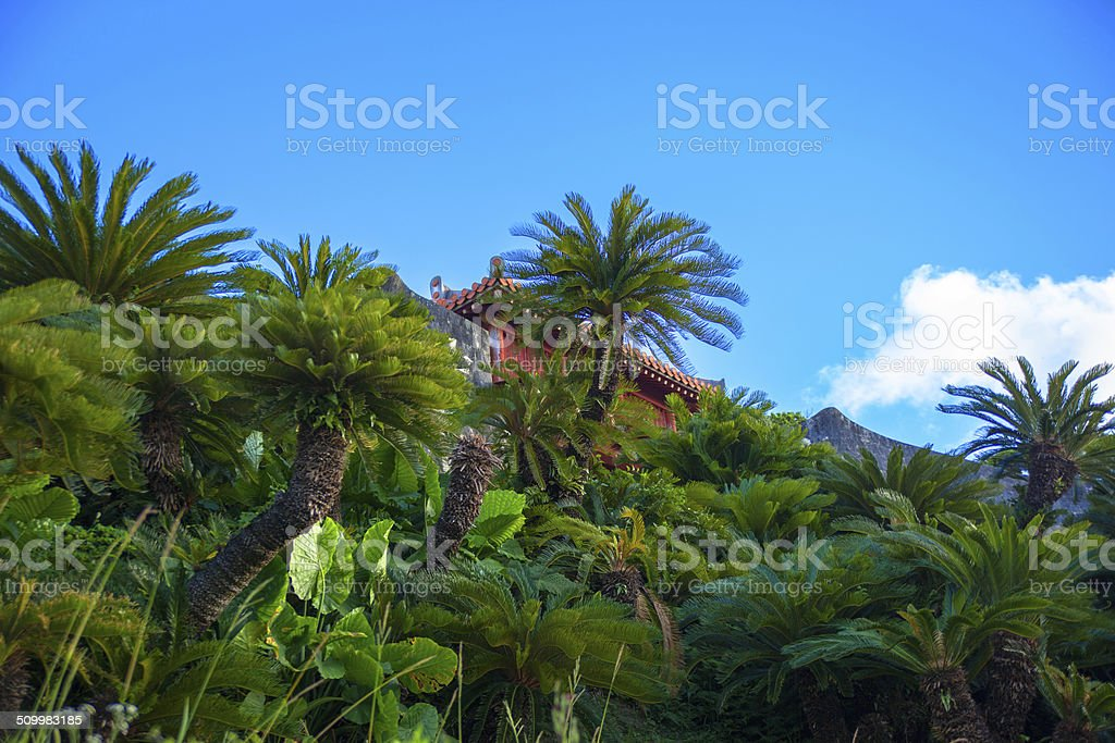 Green trees of  Shuri Castle and blue sky stock photo
